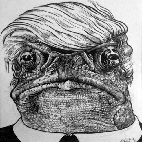 toad_scrnshot